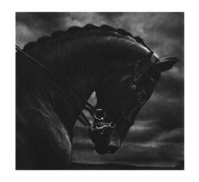 Robert Longo, 'Untitled (Bucephalus)', 2017