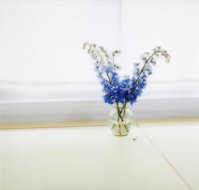 Uta Barth, 'Untitled (05.18) ', 2005