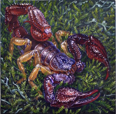 Eric Wert, 'Forest Scorpion', 2016