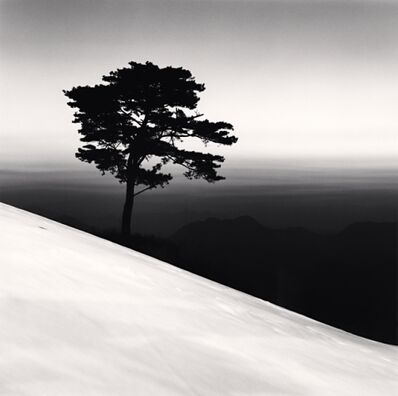 Michael Kenna, 'Mountain Tree, Danyang, Chungcheonbukdo', 2011