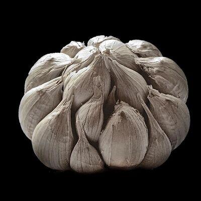 Jerry Freedner, 'Big Garlic'