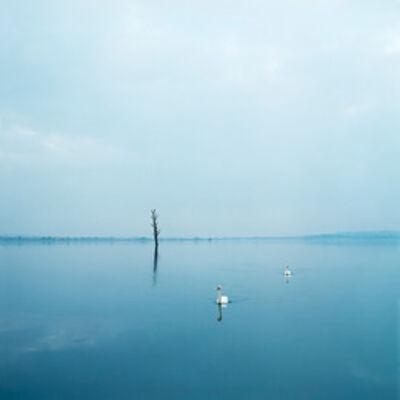Evžen Sobek, 'Untitled (Swans)', 2008