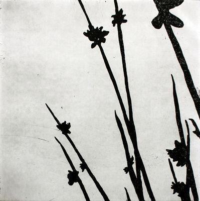 Megan McPherson, 'Sedge, whispered', 2007