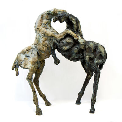 Siri Hollander, 'Lobos'