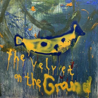 dran, 'The velvet on the ground', 2015
