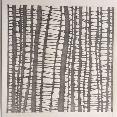 Katia Santibañez, 'Variation III', 2018-19