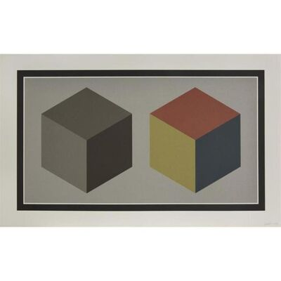 Sol LeWitt, 'Double Cubes in Gray and Colors Superimposed', 1989