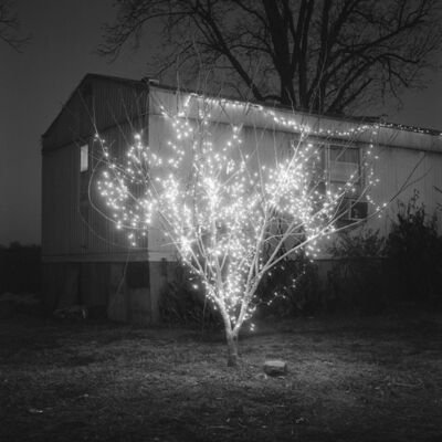 Brandon Thibodeaux, 'Christmas Tree, Alligator, Mississippi', 2012