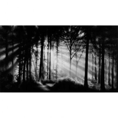 Robert Longo, 'In the Garden, Et in Arcadia Ego', 2014