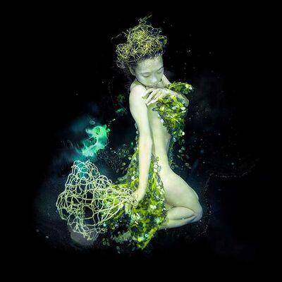Zena Holloway, 'Sea Pheonix 2'