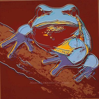 Andy Warhol, 'Pine Barrens Tree Frog, 1983 (#294, Endangered Species) ', 1983