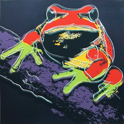 Andy Warhol, 'Pine Barrens Tree Frog II.294 from the Endangered Species portfolio', 1983