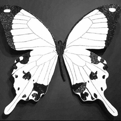 Stephanie Hirsch, 'Black and White Butterfly', 2018