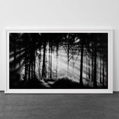 Robert Longo, 'Forest of Doxa', 2014