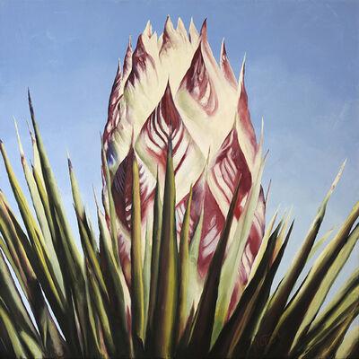 Marcia Geiger, 'Joshua Tree Bud #1', 2013