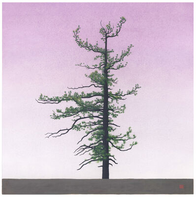 Greg Rose, 'Hillyer Tree [N34*20.374+W118*0816', 2014