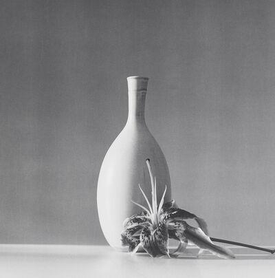 Robert Mapplethorpe, 'Flower', 1985