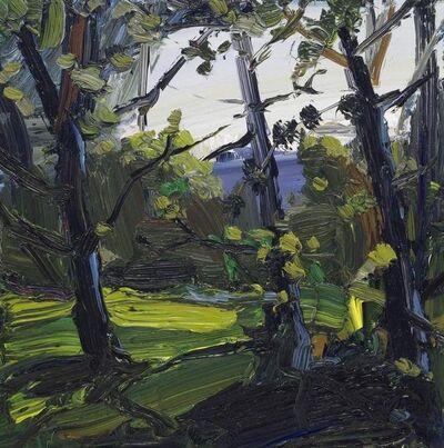 Robert Newton, 'Young Beech Trees', 2018