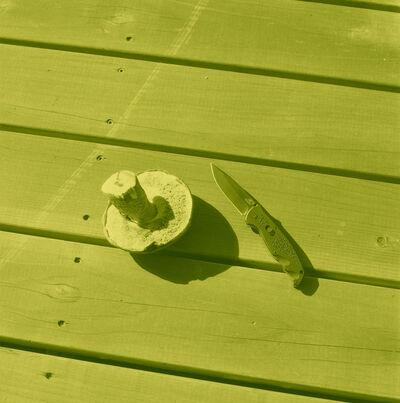 Thomas Macker, 'Mushroom and Knife on Porch', 2011