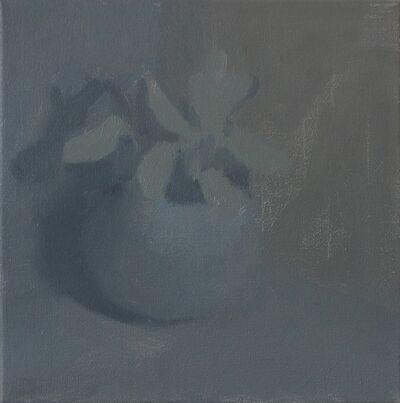Krisna Schumann, 'Gift Plant', 2018