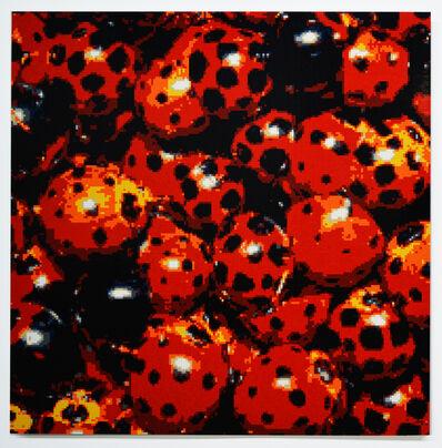 Matt Donovan, 'Ladybugs', 2016