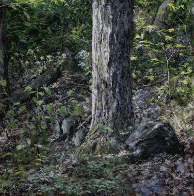 Jeff Gola, 'Norwottuck Forest, September', 2018