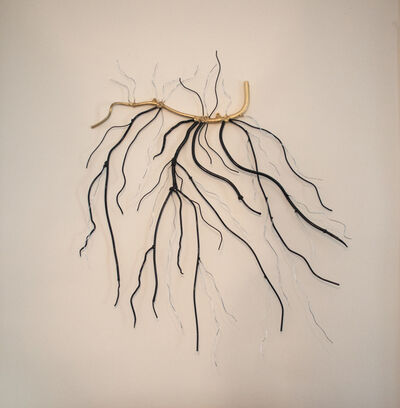 Dalya Luttwak, 'Roots or Branches?', 2015
