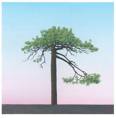 Greg Rose, 'Williamson Tree [N34*21.451+W117*51.443]', 2014