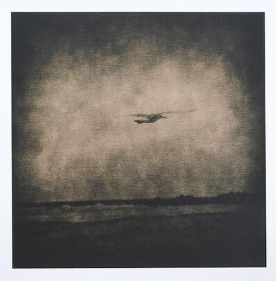 Lara Porzak, 'Seagull', 2014