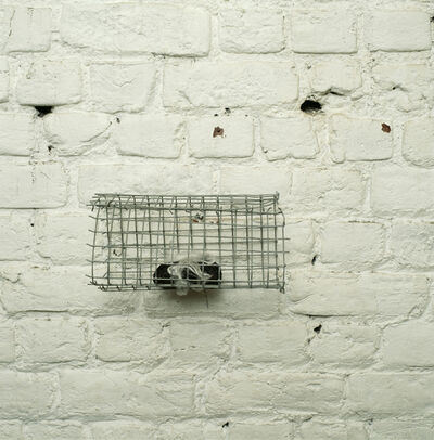 Lucia Nogueira, 'Untitled', 1992