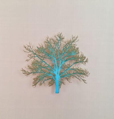 Emma Levine, 'Oak Tree 1', 2015
