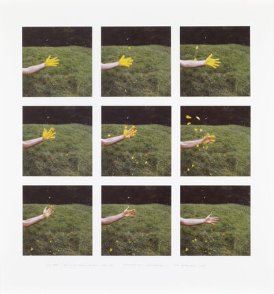 Andy Goldsworthy, 'Iris Petals / Held to My Hand / With Spit / Shook Off / Slate House Loch / Dumfriesshire', 2008