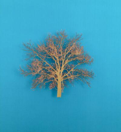 Emma Levine, 'Oak Tree 7', 2015
