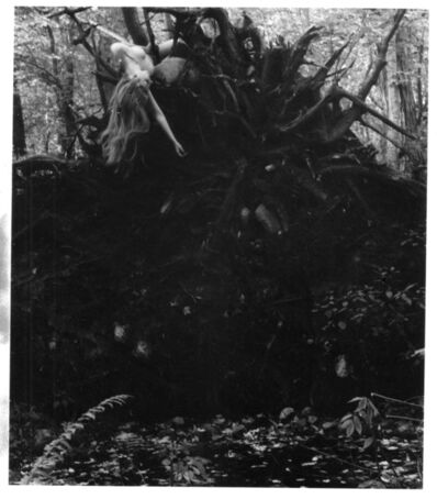 Francesca Woodman, 'Untitled (self-portrait with tree roots), Andover, Massachusetts ', 1972-1974
