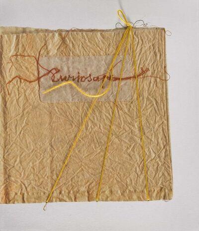 Maria Lai, 'Curiosape', 2002