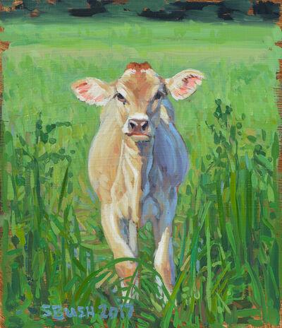 Stephanie Bush, 'Cow Study 21'