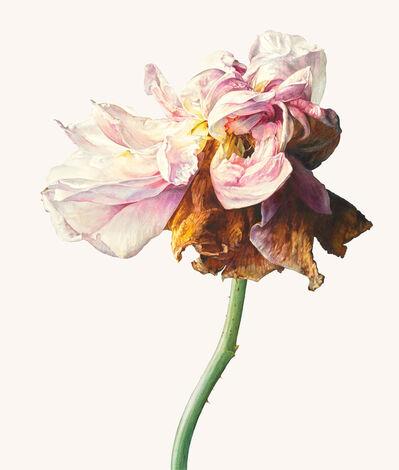 Rosie Sanders, 'La Vie en rose'