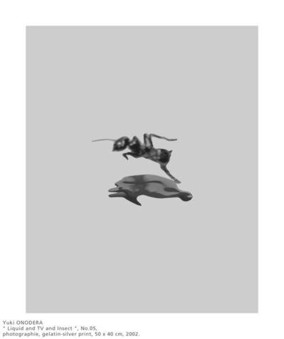 Yuki Onodera, 'Liquid TV and Insect No.05 ', 2002