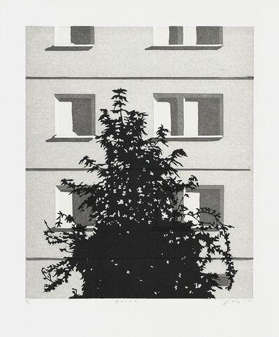 Claas Gutsche, 'Busch', 2015