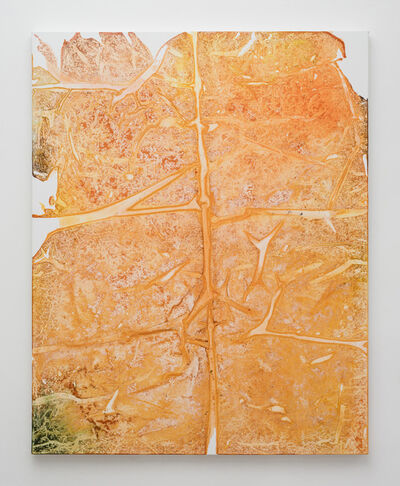 Rotem Reshef, 'Imprint#84', 2015
