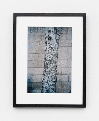 Jack Greer, 'The Trees Behind the Louvre in the Winter of 2015 (5)', 2015