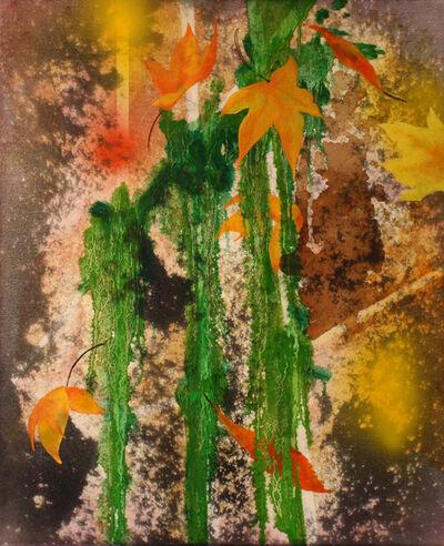 Nitin Mukul, 'Realm of the Senses', 2013