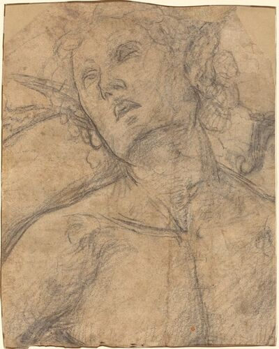 Luca Signorelli, 'Bust of a Youth Looking Upward [recto]', ca. 1500