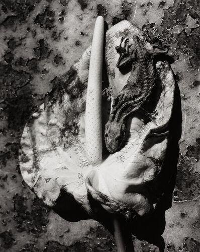 Nobuyoshi Araki, 'Untitled, Japan', ca. 2000