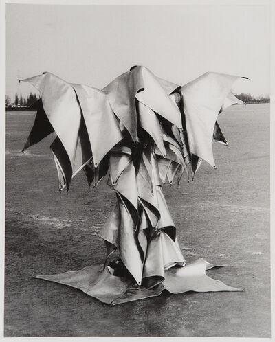 Cláudio Goulart, 'On Ice', 1978