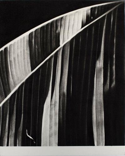 Romain Cadilhon, 'Nocturne IV', 2018