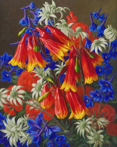 Fiona Craig, 'Blandfordia and Flannel Flowers'