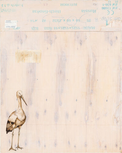 Joseph Rossano, 'EDNA: Oriental Stork', 2015