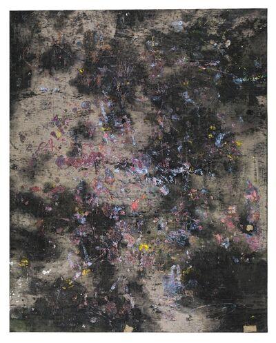Gijs van Lith, 'au naturel', 2018