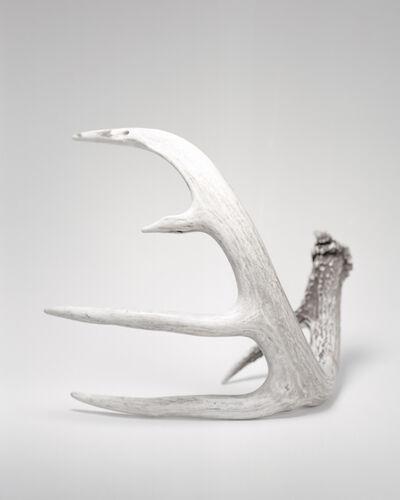 Alberto Sinigaglia, 'Seneca Horns ', 2016